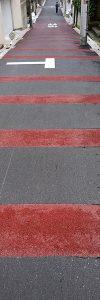 01(DSC_3643・20181011)加工・トリミング縮小300×900・コントラスト+33・露光量ガンマ0.85・奥の色のみ自然な彩度-100彩度-50